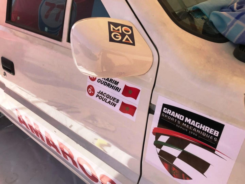 Poulain au couleur du Maroc au Rallye M'hamid Express 2018