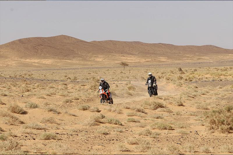 letrail-desert-challenge-prend-forme-667-2.jpg
