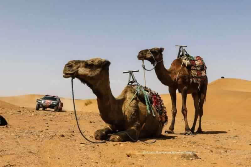 rallye-du-maroc-david-castera-en-interview-exclusive-670-1.jpg