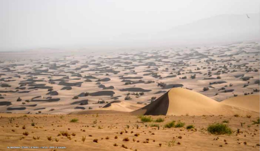 dakar-2020-chapitre-iii-au-royaume-des-sables-1152-2.png