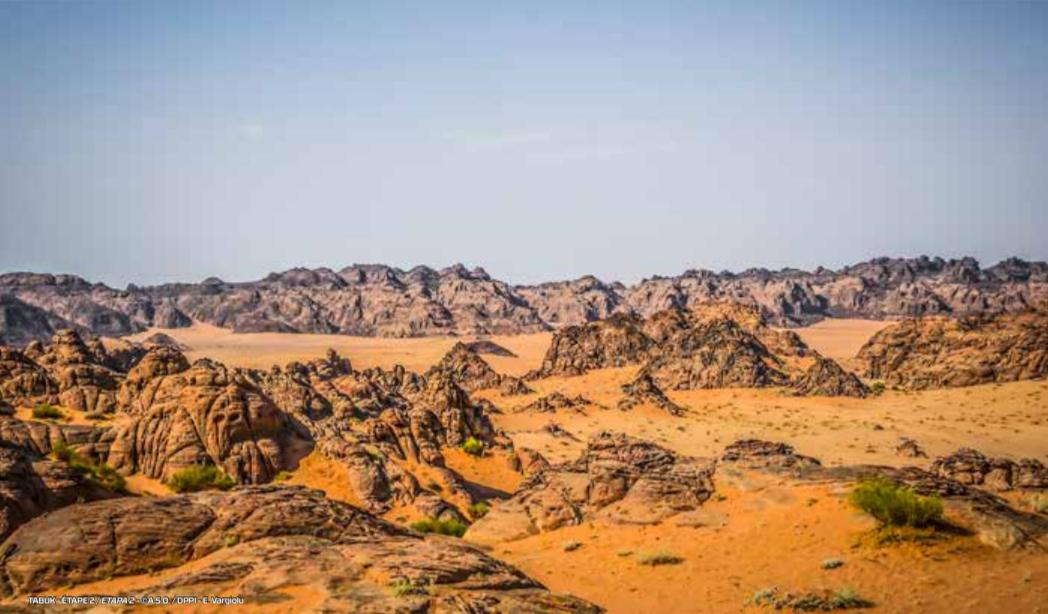 dakar-2020-chapitre-iii-au-royaume-des-sables-1152-3.png