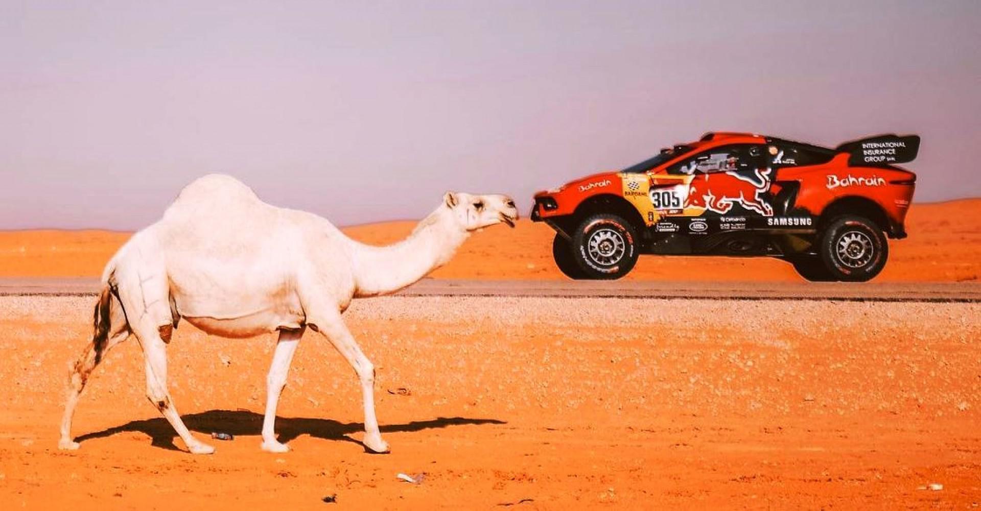 رالي داكار : تألق المصورين الفوتوغرافيين العرب